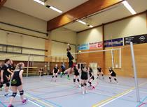 Volleybaltornooi  2018(6).jpg