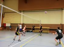 Volleybaltornooi  2018(9).jpg